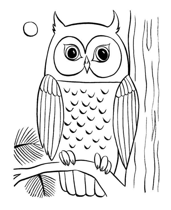 Best ideas about Owl Coloring Sheets For Girls That Say Mom . Save or Pin coloring pages of owls to print Now.