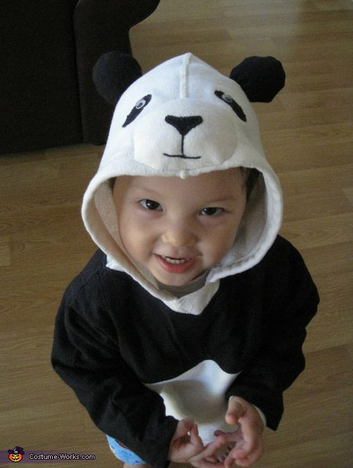 Best ideas about Panda Costume DIY . Save or Pin 23 best Costume ideas images on Pinterest Now.