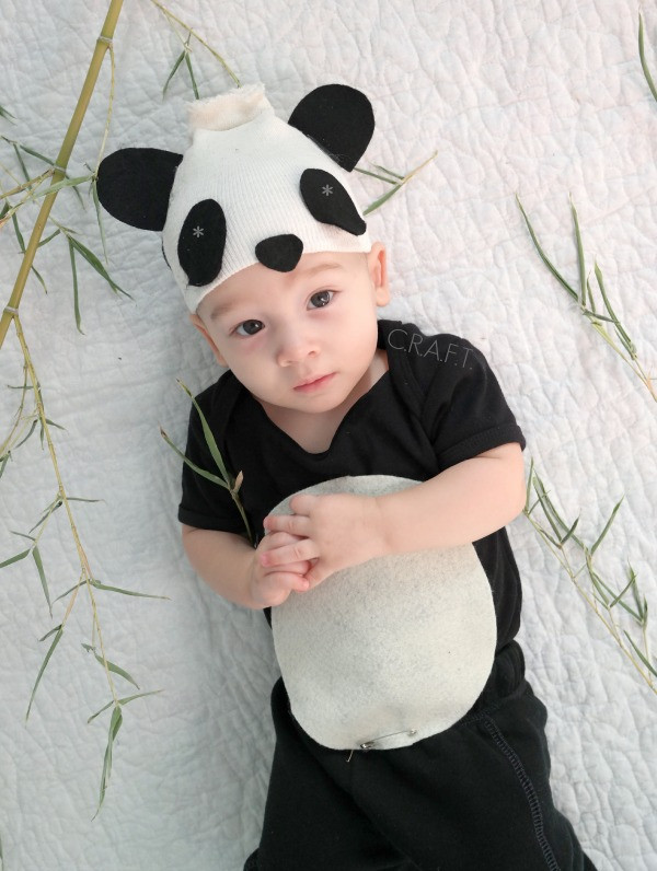 Best ideas about Panda Costume DIY . Save or Pin Check Out These 50 Creative Baby Costumes For All Kinds of Now.