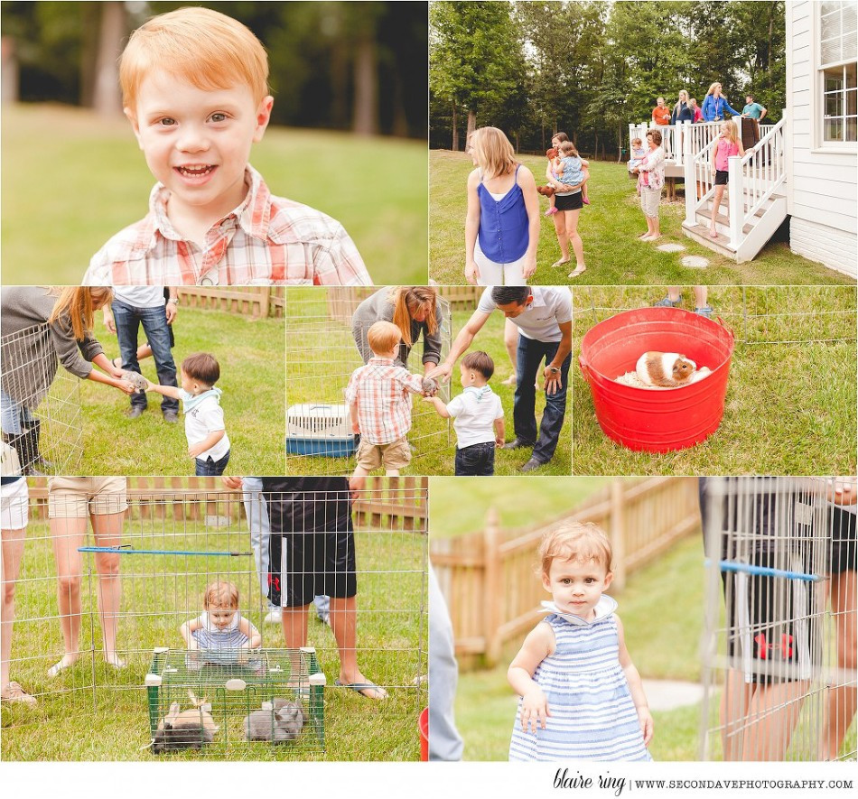 Best ideas about Petting Zoo Birthday Party . Save or Pin Ms C Turns 3 Petting Zoo Birthday Party Now.