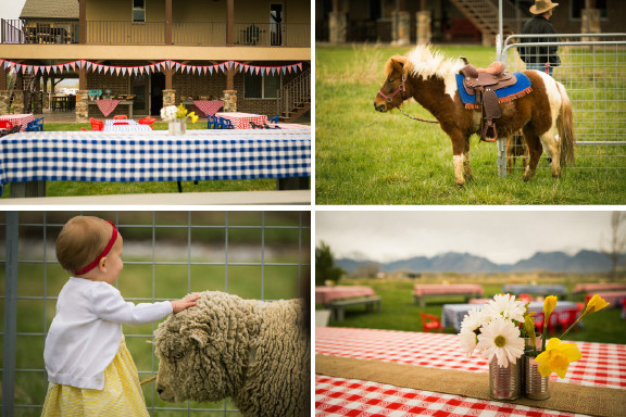 Best ideas about Petting Zoo Birthday Party . Save or Pin birthday party Culinary Crafts Now.