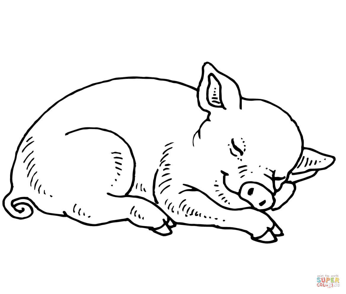 Best ideas about Pig Coloring Pages . Save or Pin Sleeping Baby Pig coloring page Now.