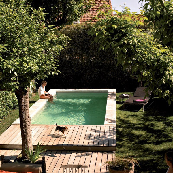 Best ideas about Pools For Small Backyard . Save or Pin 18 Gorgeous Plunge Pools For Tiny Backyard Now.