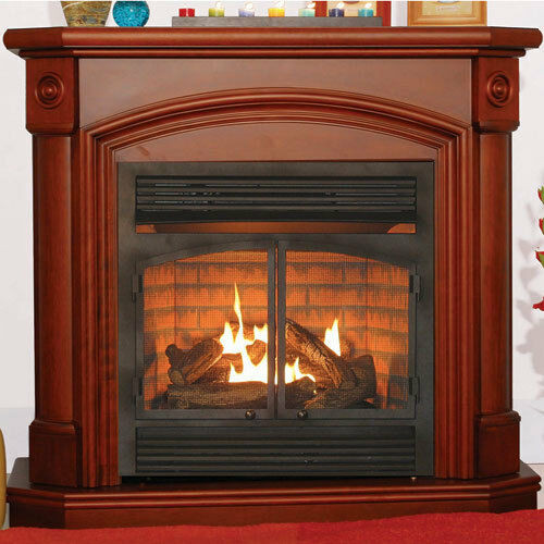 Best ideas about Propane Fireplace Heater . Save or Pin VENTLESS HEATER FIREPLACE NATURAL GAS PROPANE LP MANTEL Now.