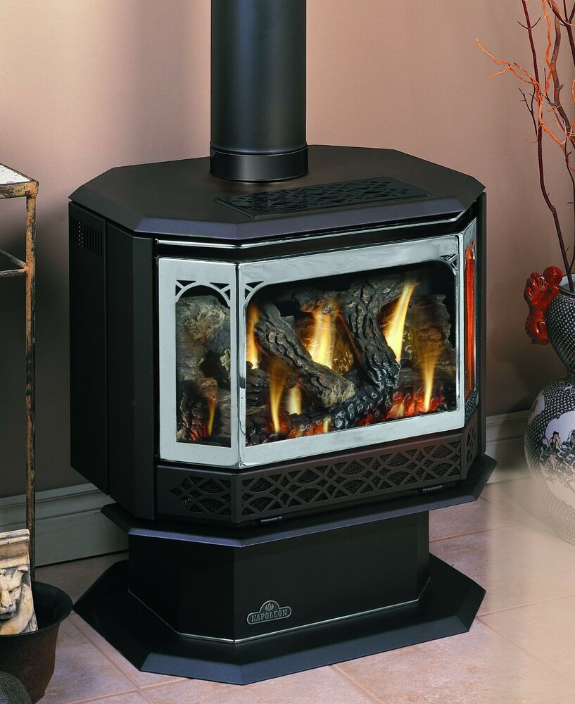 Best ideas about Propane Fireplace Heater . Save or Pin Napoleon Gas Fireplace GDS50 Stove Free standing LP NG Now.