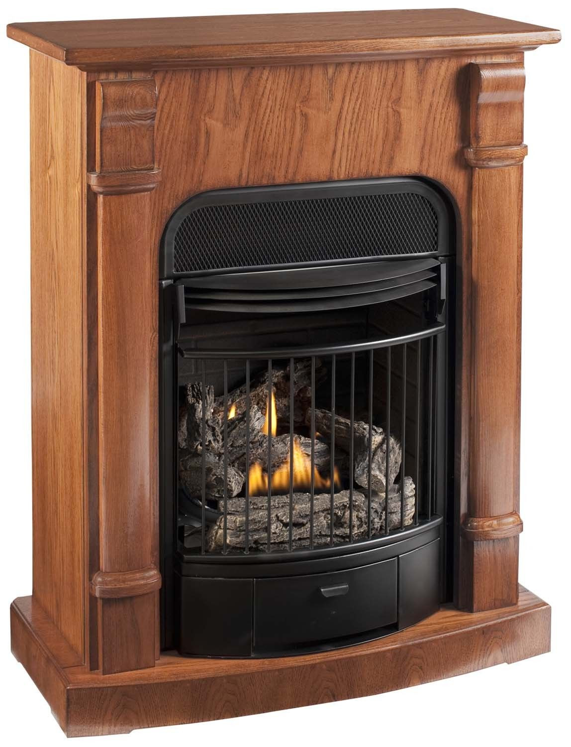 Best ideas about Propane Fireplace Heater . Save or Pin KozyWorld Windsor Four in e Dual Fuel Vent Free Gas Now.