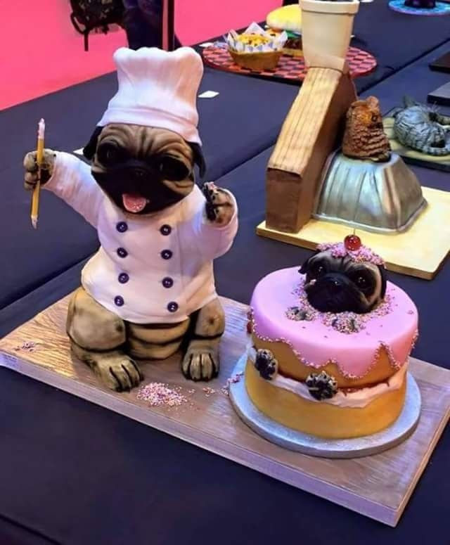 Best ideas about Pug Birthday Cake . Save or Pin 11 best Mops Torte images on Pinterest Now.