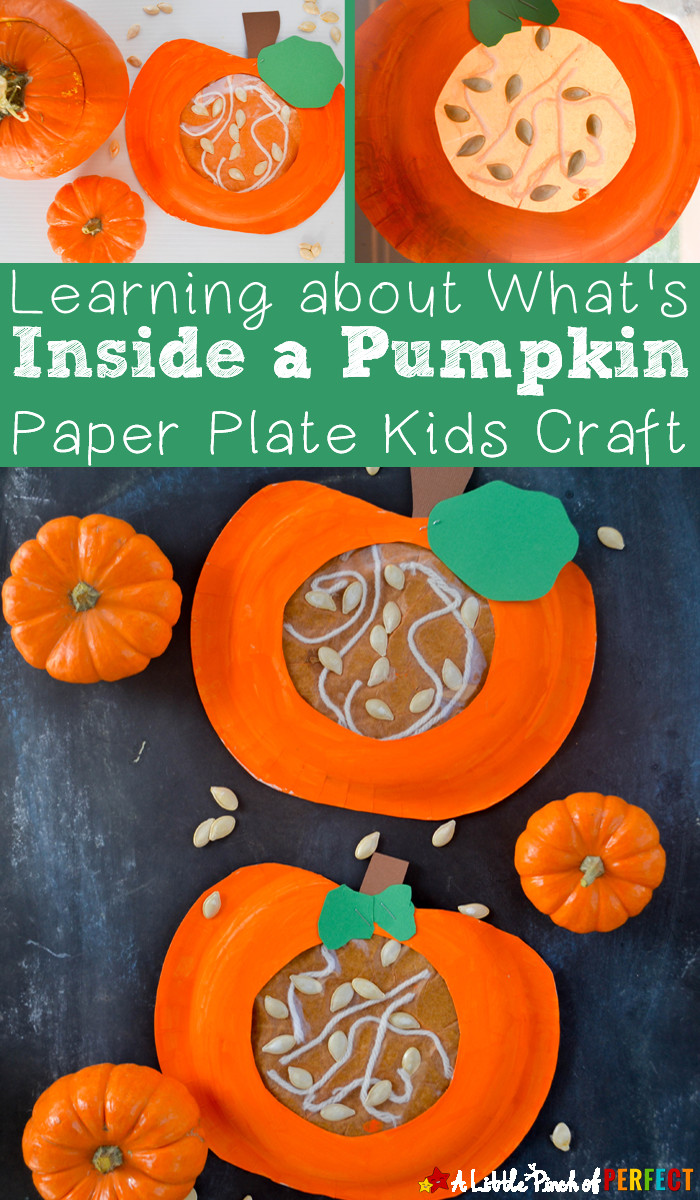 Best ideas about Pumpkin Craft Ideas . Save or Pin Learning about what s Inside a Pumpkin Paper Plate Kids Now.