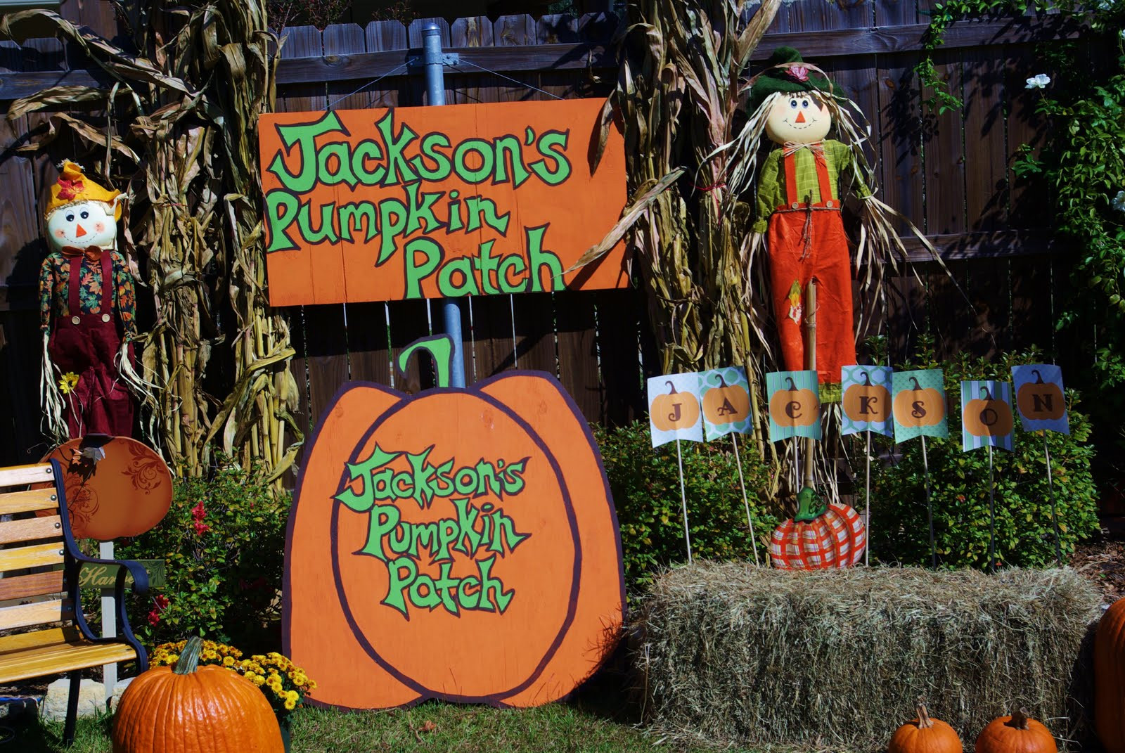 Best ideas about Pumpkin Patch Birthday Party . Save or Pin Choosing Joy Today Jackson s 1st birthday Pumpkin Patch Now.
