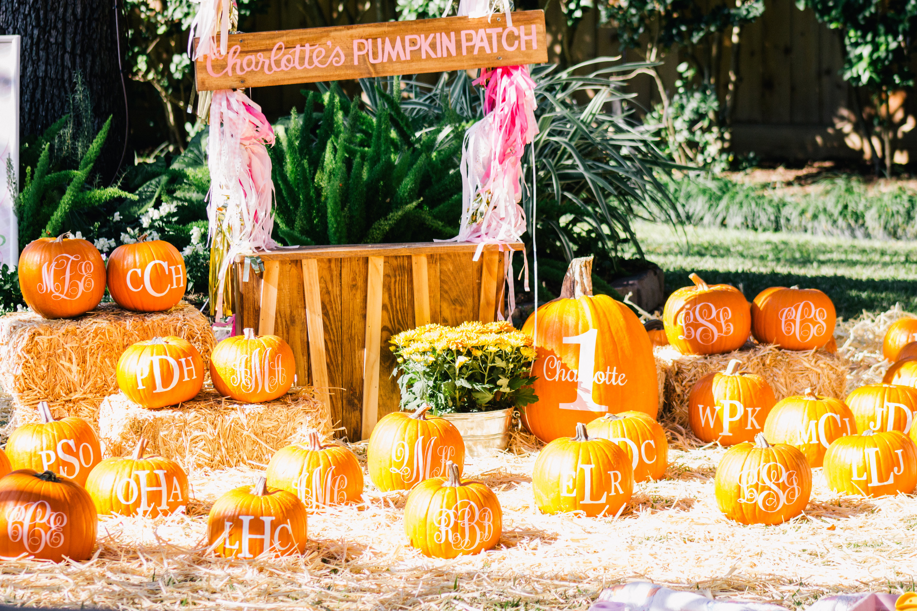 Best ideas about Pumpkin Patch Birthday Party . Save or Pin MLM A pumpkin patch birthday party L Avenue Now.