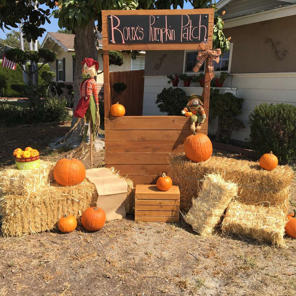 Best ideas about Pumpkin Patch Birthday Party . Save or Pin Autumn Pumpkin Patch Party Birthday Party Ideas Now.