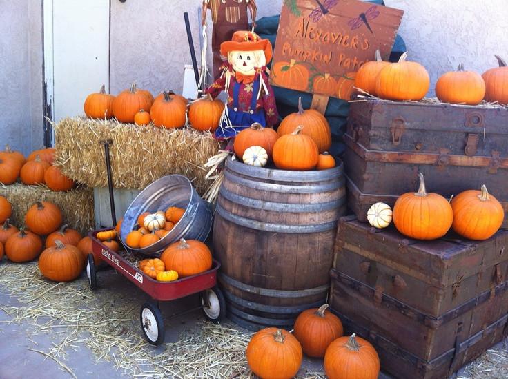 Best ideas about Pumpkin Patch Birthday Party . Save or Pin Pumpkin patch birthday party Now.