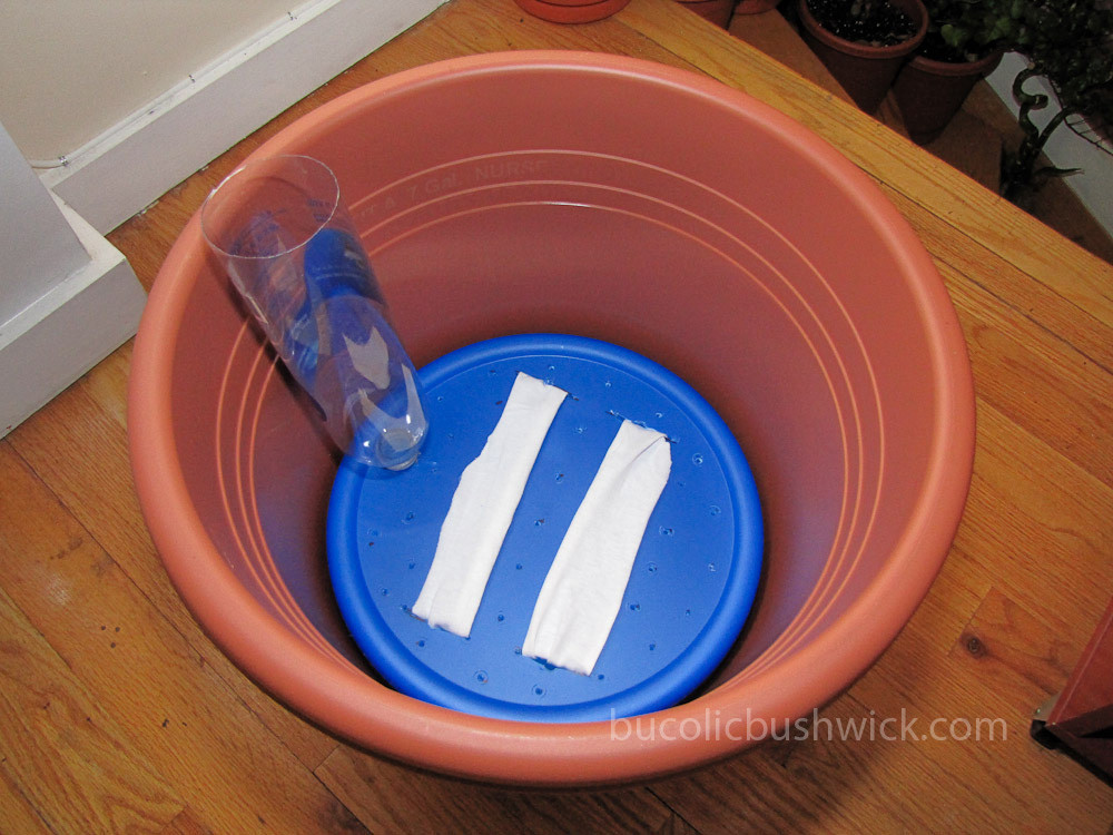 Best ideas about Self Watering Pots DIY . Save or Pin Bucolic Bushwick DIY Self Watering Planter How to Now.