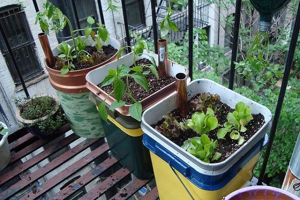 Best ideas about Self Watering Pots DIY . Save or Pin 14 Best DIY Self Watering Container Garden Ideas Now.