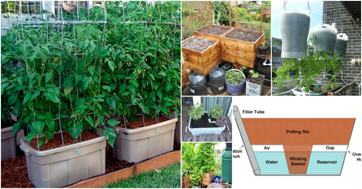 Best ideas about Self Watering Pots DIY . Save or Pin 15 DIY Self Watering Planters That Make Container Now.