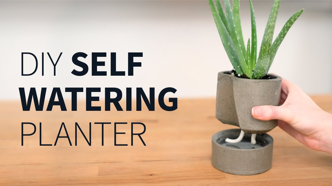 Best ideas about Self Watering Pots DIY . Save or Pin DIY self watering concrete planter Now.