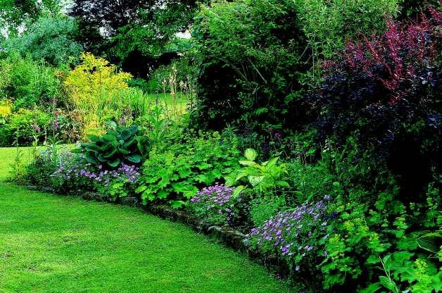 Best ideas about Shade Garden Ideas . Save or Pin Gardening Shade Gardening Now.