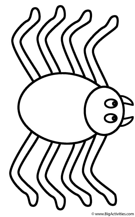 Best ideas about Spider Printable Coloring Pages . Save or Pin Spider Coloring Page Insects Now.
