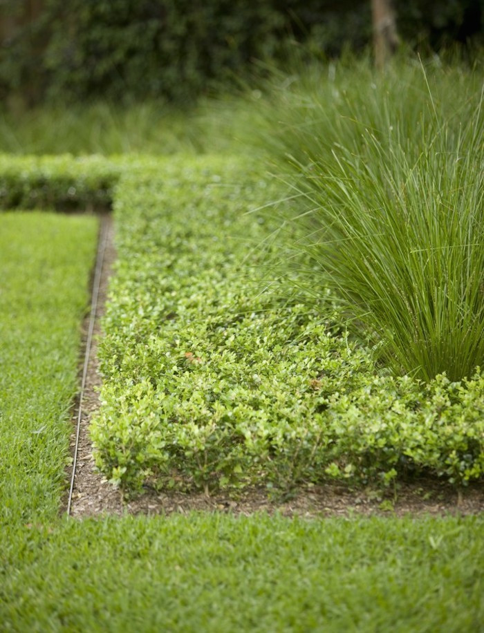 Best ideas about Steel Landscape Edging . Save or Pin Hardscaping 101 Metal Landscape Edging Gardenista Now.