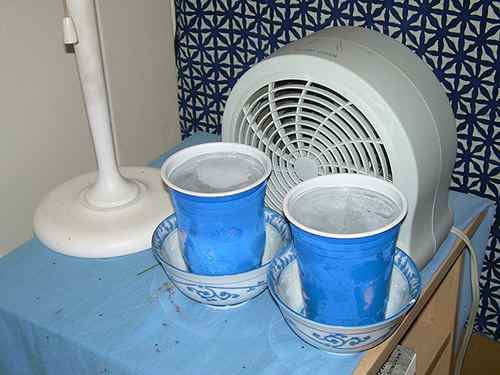 Best ideas about Swamp Cooler DIY . Save or Pin 13 Ways To Keep Your House Cool In The Summer Ask a Prepper Now.
