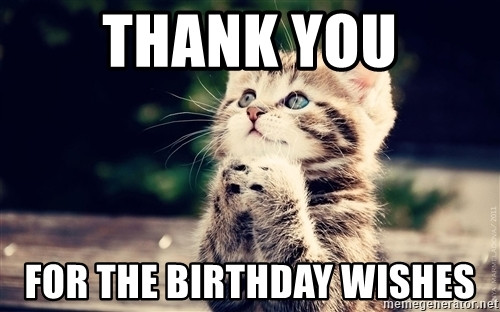 Best ideas about Thanks For The Birthday Wishes Meme . Save or Pin Thank you for the birthday wishes Thank You Cat Now.