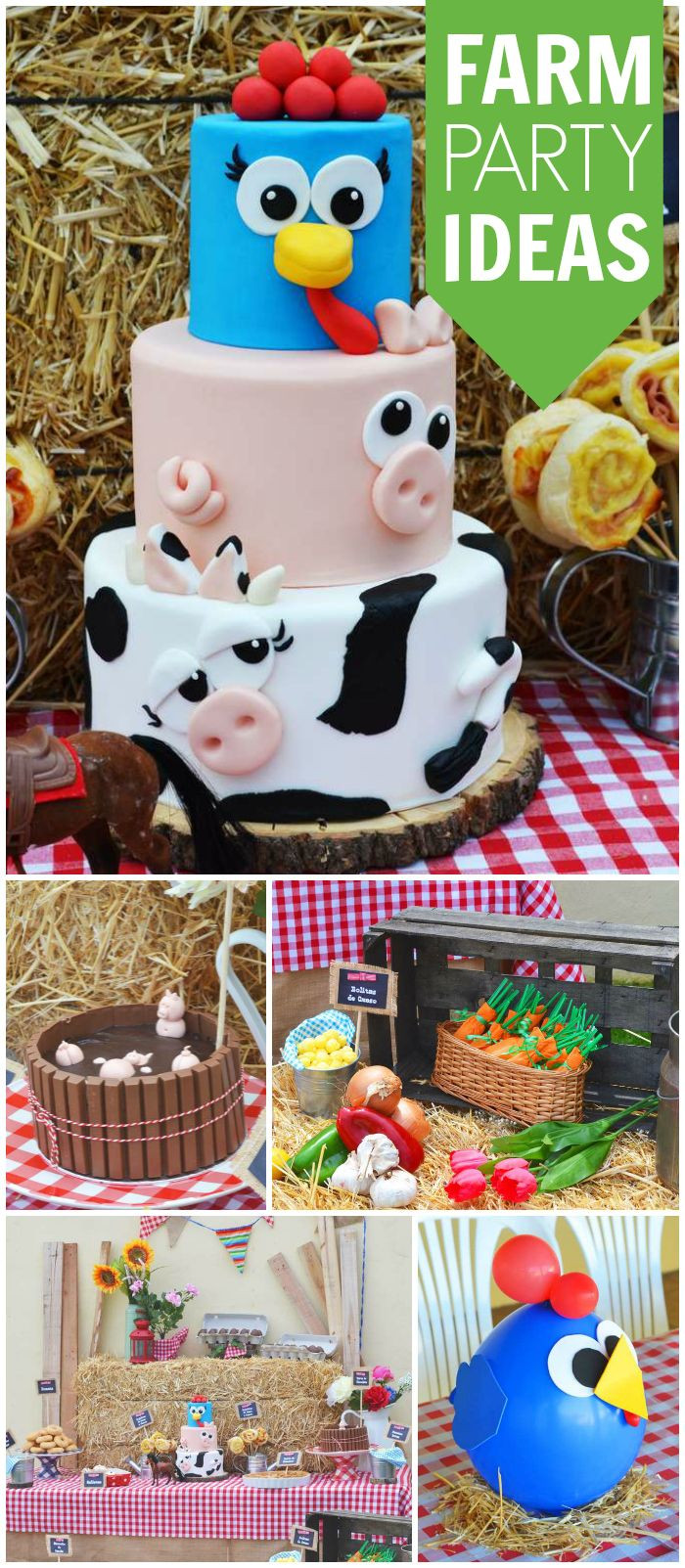 """Best ideas about Toddler Birthday Party Ideas . Save or Pin The farm la granja Birthday """"La granja"""" Now."""