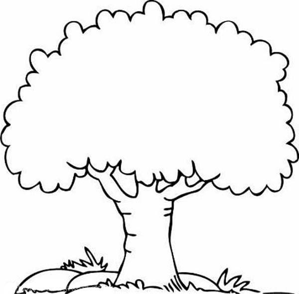 Best ideas about Tree Coloring Sheets For Kids . Save or Pin Tree Coloring Pages 8 coloring Now.