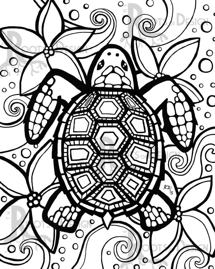Best ideas about Turtle Coloring Pages For Adults . Save or Pin turtle coloring pages Google Search Now.