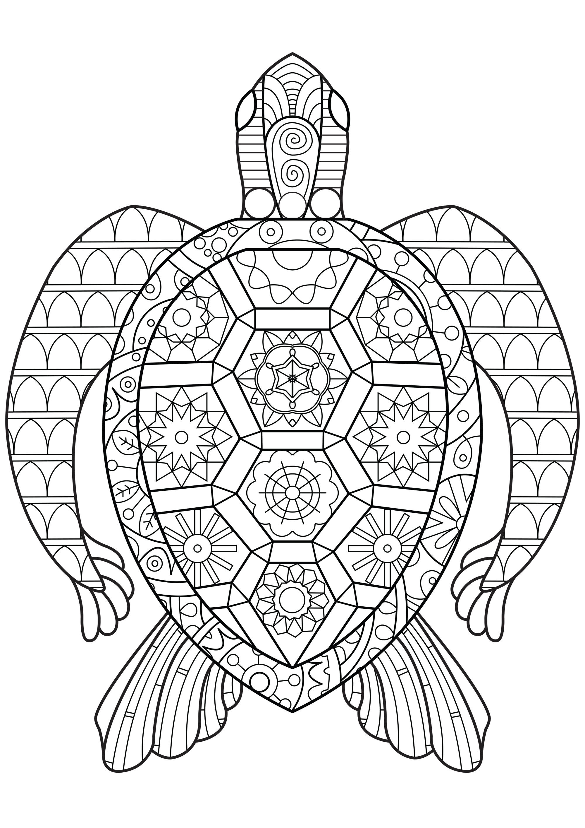 Best ideas about Turtle Coloring Pages For Adults . Save or Pin Zen Turtle Turtles Adult Coloring Pages Now.