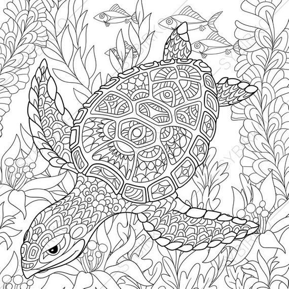Best ideas about Turtle Coloring Pages For Adults . Save or Pin Adult Coloring Pages Turtle Zentangle Doodle Coloring Pages Now.