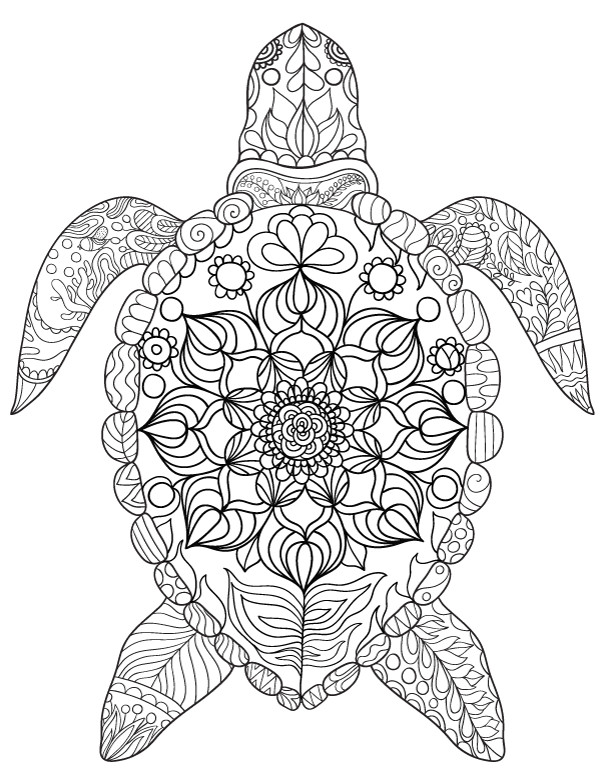 Best ideas about Turtle Coloring Pages For Adults . Save or Pin Sea Turtle Adult Coloring Page Now.