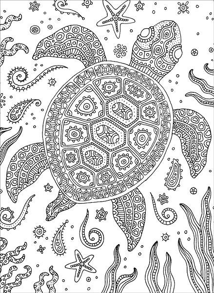 Best ideas about Turtle Coloring Pages For Adults . Save or Pin 936 best ♋Adult Colouring Under the Sea Fish Mermaids Now.