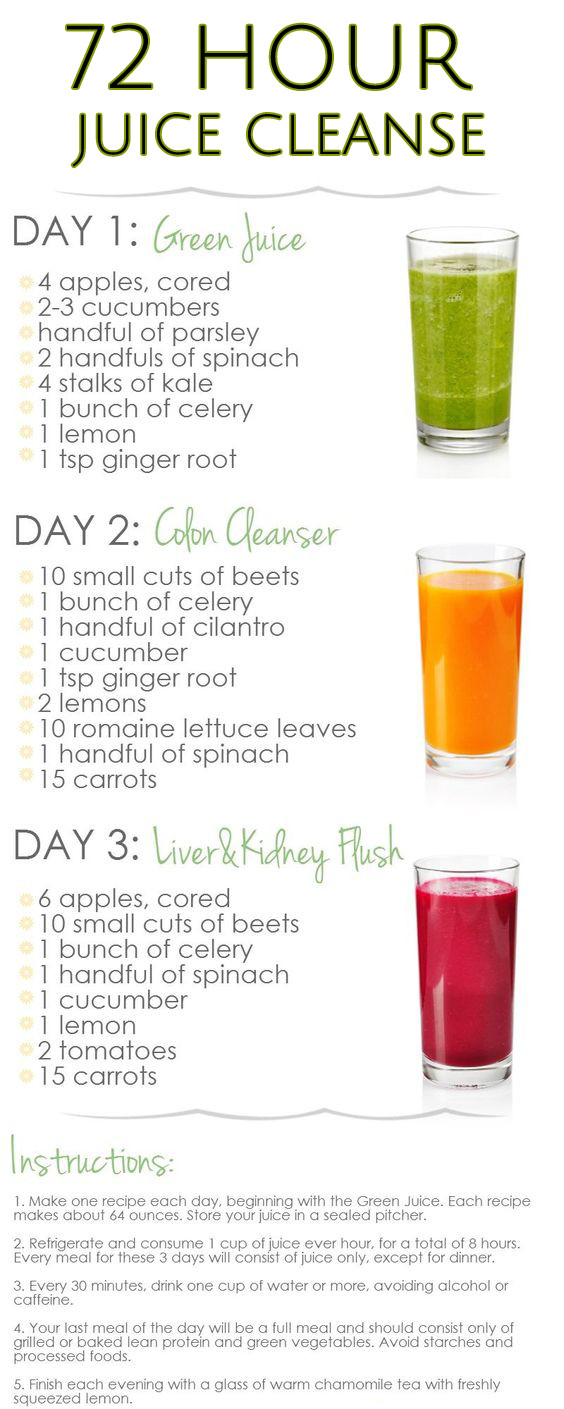 Best ideas about Weight Loss Cleanse DIY . Save or Pin 10 Amazing Juice Diet Recipes For Weight Loss Now.