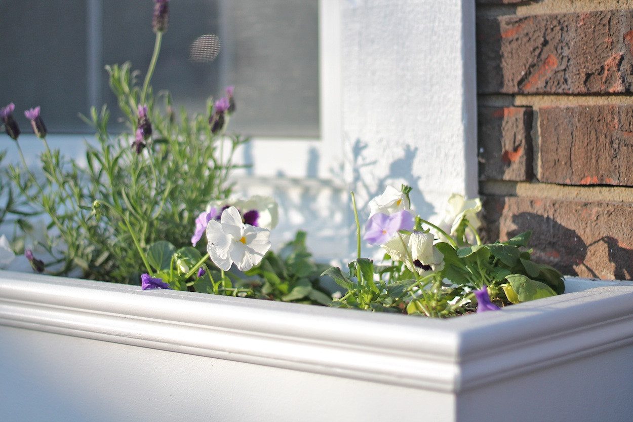Best ideas about Window Boxes DIY . Save or Pin How to Make Window Boxes Now.