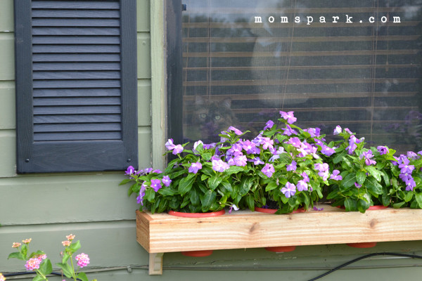 Best ideas about Window Flower Boxes DIY . Save or Pin DIY Window Flower Box from Scratch Now.